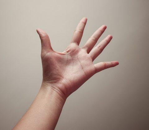 תורת כף היד